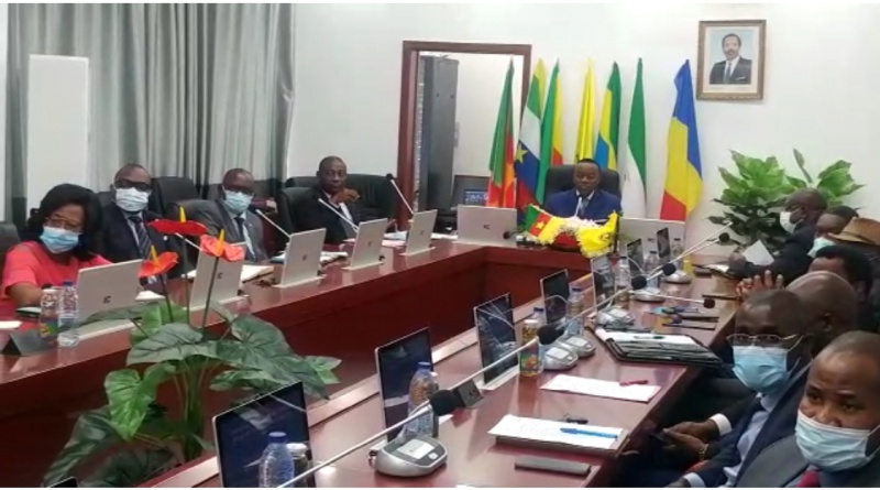 CEMAC: Member countries heading towards harmonization of education systems